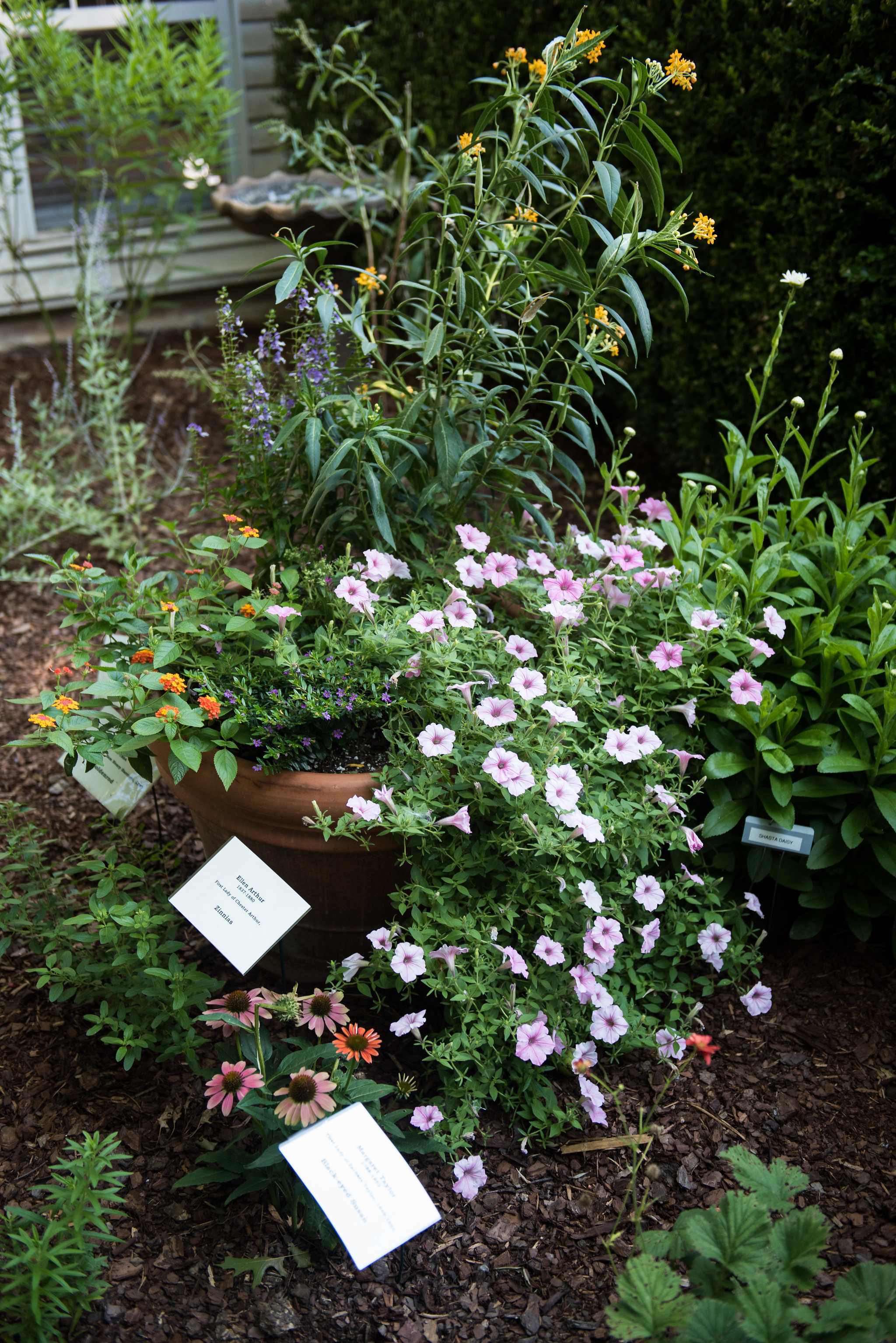 Clinton House Museum Bloom 2018 (59)